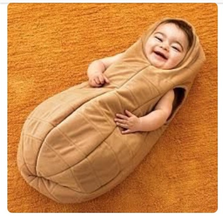did you know there arent any peanut costume patterns out there at least not any good infant ones that i could find so i looked at the above picture of a